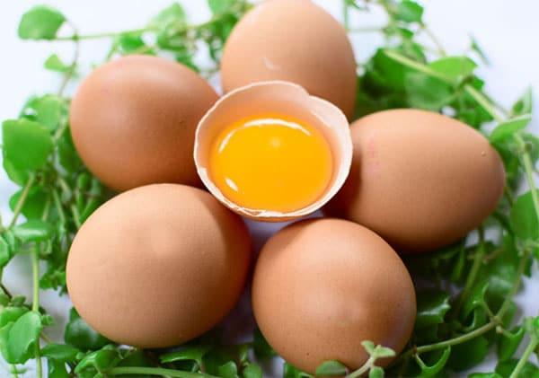 trứng gà cung cấp nhiều giá trị dinh dưỡng
