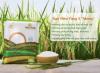Gạo niêu vàng: Gạo sạch nguyên chất từ phòng thí nghiệm tới bàn ăn_5ecc8af3f2e18.png