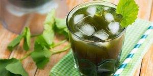 Nước rau má rất tốt cho cơ thể trong những ngày nắng nóng
