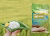 6 loại gạo tốt cho người bệnh, người già, trẻ nhỏ_5ed5c55c80d16.png