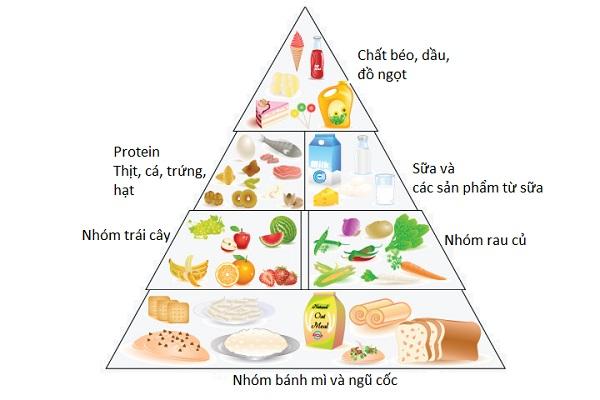 Làm thế nào để có bữa ăn hợp lý và đủ dinh dưỡng?